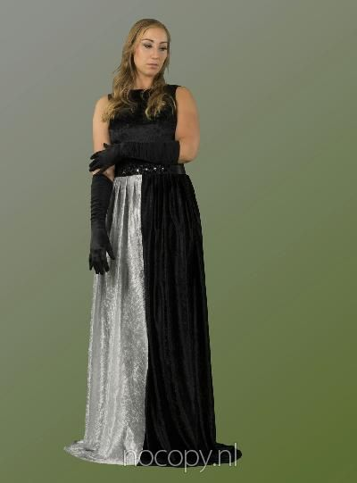 Gawn dress brilliance of the night